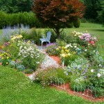 Thumbnail image for Starting A Garden In Your Backyard