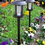 Thumbnail image for Solar Lights: Brighten Your Night